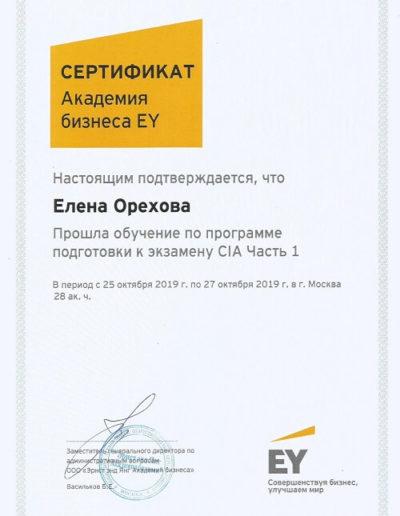 Е. Орехова - Акадения бизнеса EY